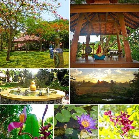 Tropical fruit, exotic Thailand & beautiful Tao Garden
